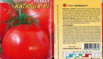 Томат Катюша Цветущий сад
