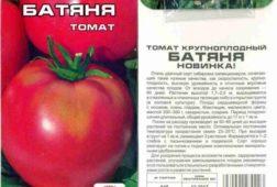Томат Батяня - Сибирский сад