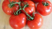 Благовест F1: классика отечественного овощеводства