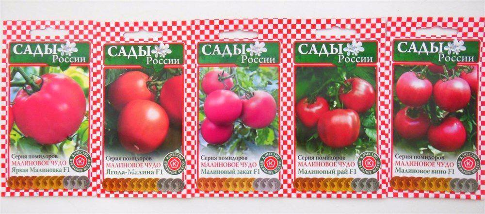 помидоры золотое малиновое чудо
