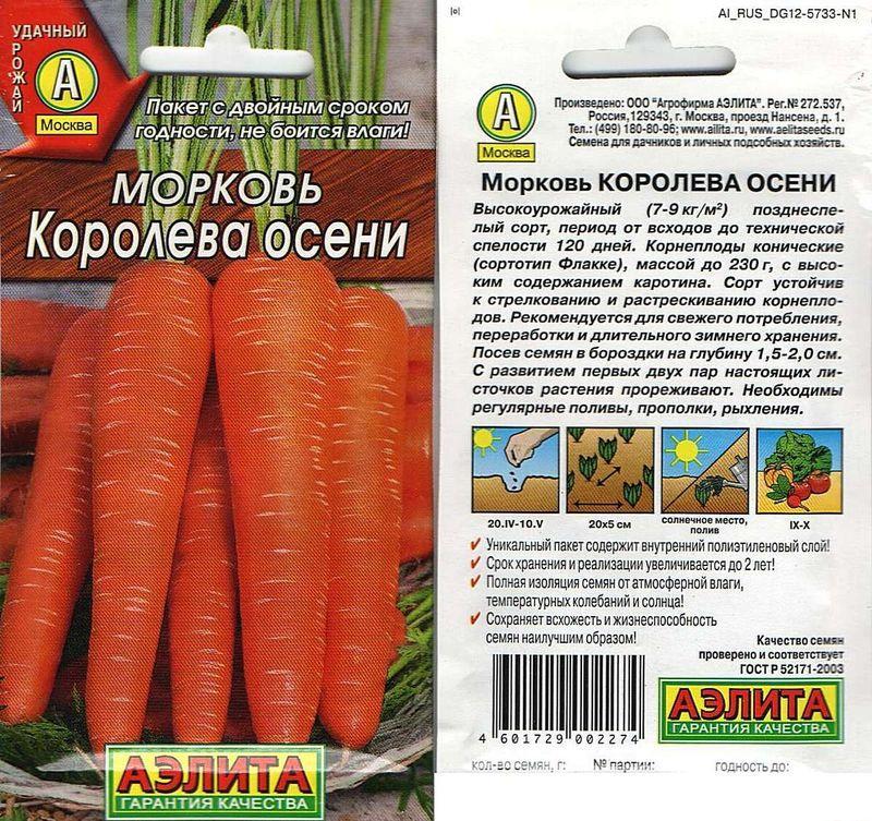 Лучшие сорта моркови для длительного хранения