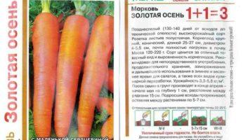 Морковь Золотая осень