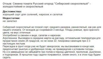 Отзыв о томате Сибирский скороспелый - холодостойкий, раннеспелый