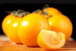 Сорта желтых помидоров
