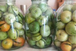 Фаршированные на зиму зеленые помидоры