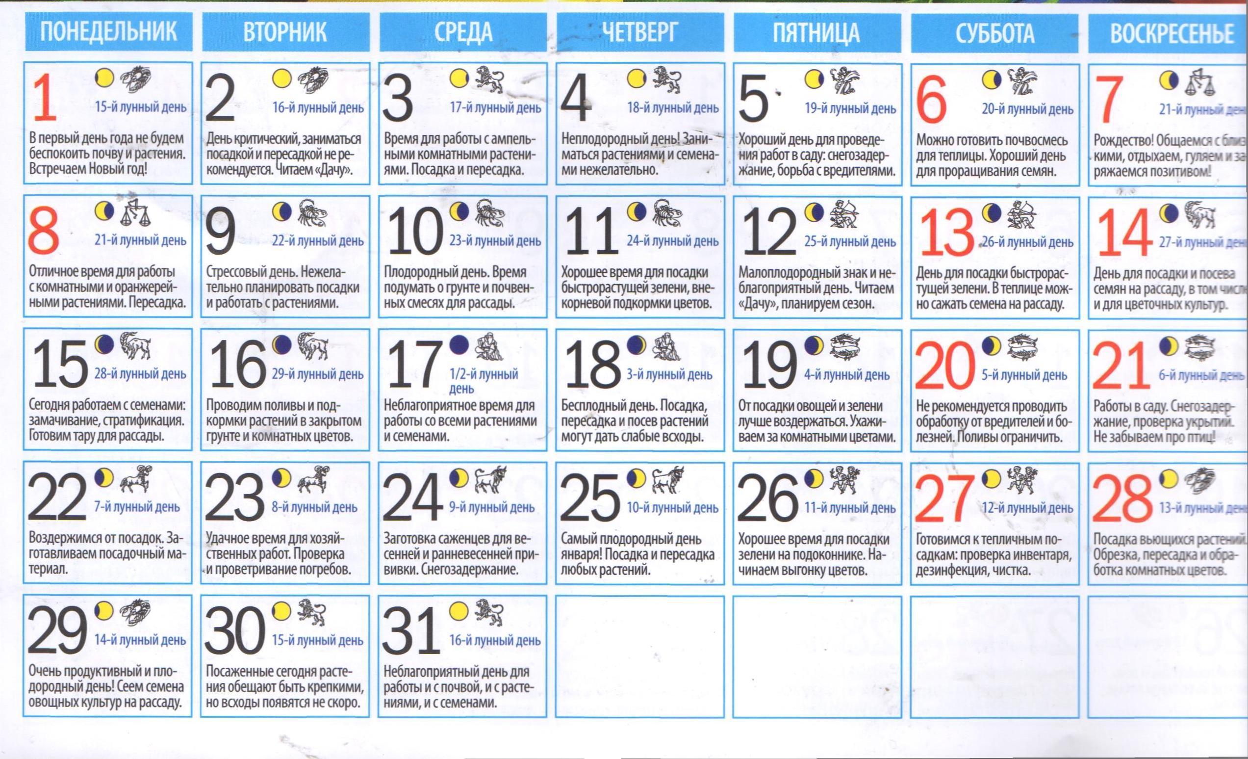 Лунный календарь садовода и огородника на январь 2018