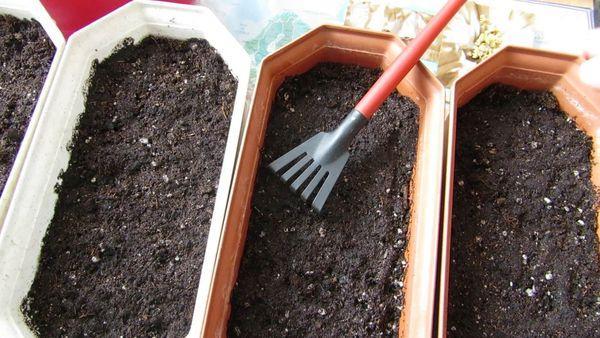 Подготовка земли под рассаду