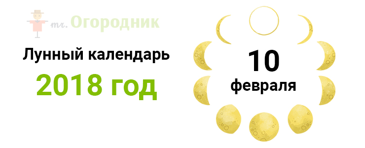 Календарь 10.02