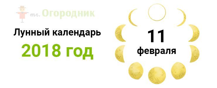 Календарь 11.02