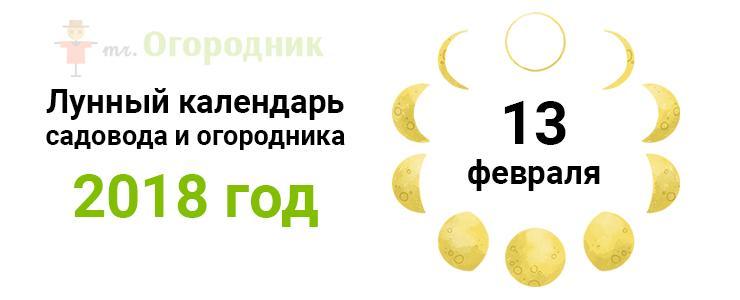 Календарь 13.02