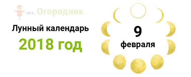 Календарь 9.02