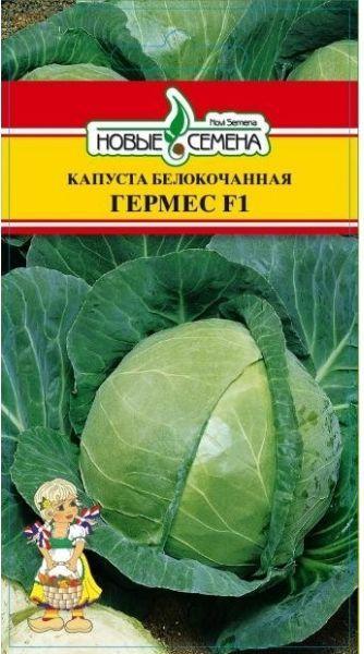 ранние сорта капусты белокочанной названия