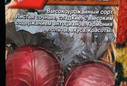 Капуста краснокочанная Фаберже