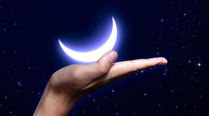 Сроки посадки по лунному календарю