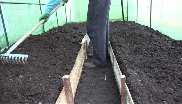 Подготовка грядок в теплице под помидоры