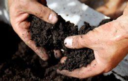 Подготовка почвы в теплице под помидоры