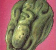 Столбур на плоде перца рисунок