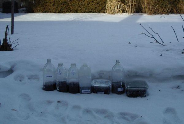 Стратификация в снегу