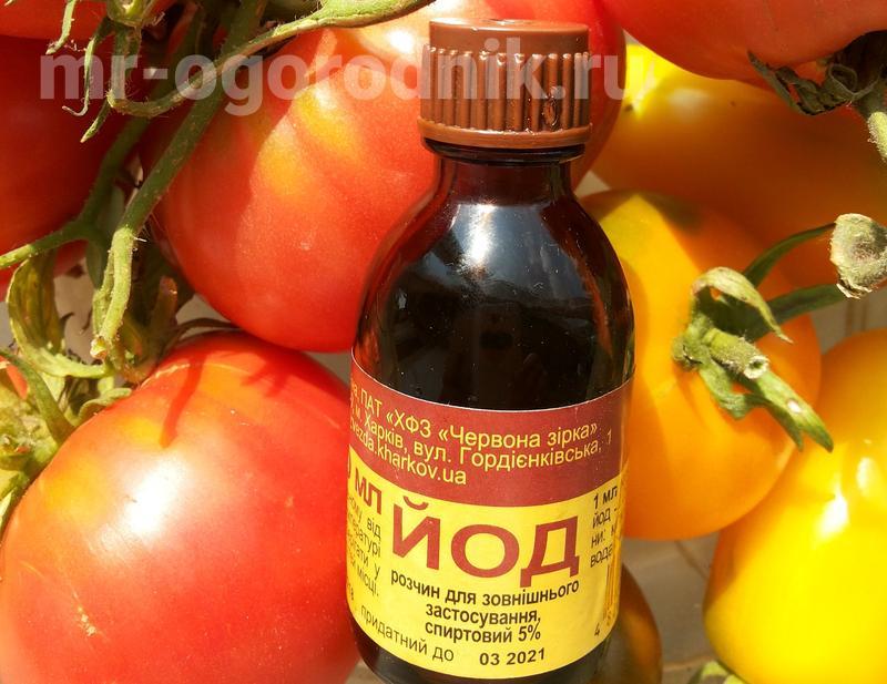 Подкормка помидоров йодом