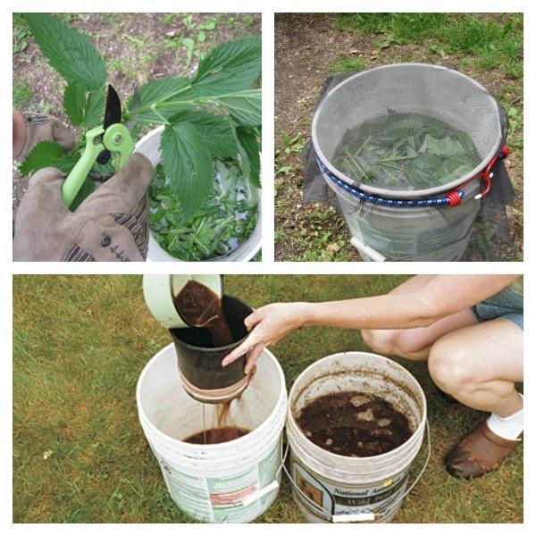 Приготовления травяного удобрения