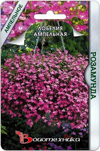Лобелия ампельная Розамунда