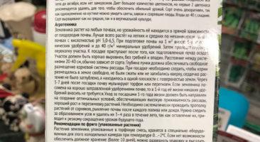 Клубника Гирлянда - описание