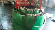 Мой опыт выращивания рассады томатов в улитке из туалетной бумаги