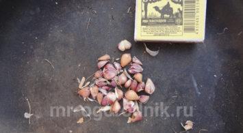 Посадка чеснока бульбочками